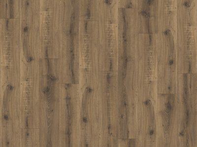 focus-produit-brio-oak-22877